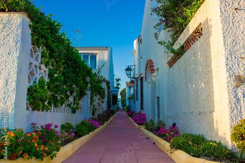 Zdjęcie XXL Hiszpańska ulica. Mała tradycyjna Hiszpańska ulica z roślinami i kwiatami. Costa del Sol, Andaluzja, Hiszpania. Zdjęcie zrobione - 15 października 2017 r.