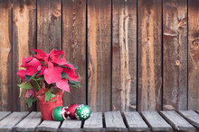 Poinsetta Plant On Wooden Plank Table With Three Christmas Tree Decorations Beside It.