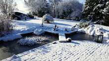 Sonnige, Winterliche Gartenanl...