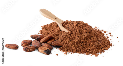 Cocoa beans and heap of Cocoa powder isolated on a white background. Macro with full dept of field