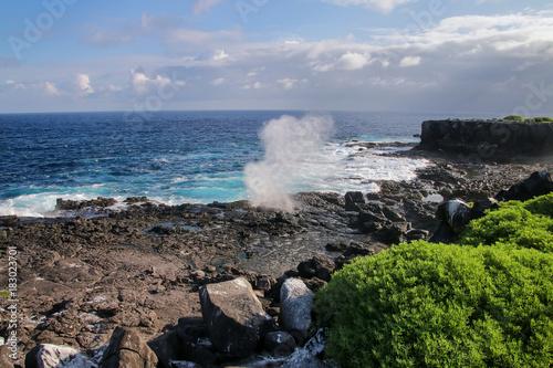 Coast of Espanola Island with blowholes, Galapagos National park, Ecuador Canvas Print
