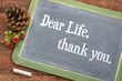 Dear life, thank you on blackboard