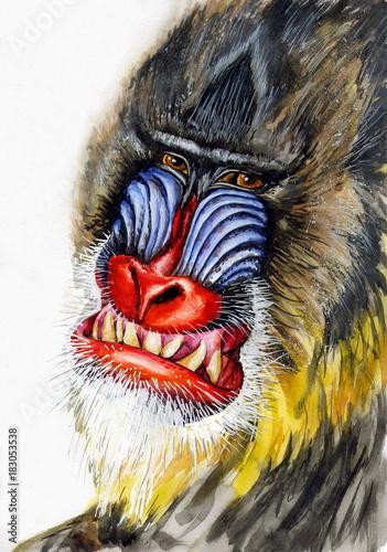 Foto op Canvas Hand getrokken schets van dieren Рисунок акварелью