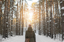 Woman Walks A Winter Forest Wi...