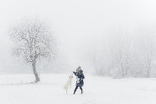Little Kid, Child Playing With White  Dog On Snow In Winter Day, Flying Snowflakes, Trees And She Wears Winter Clothes