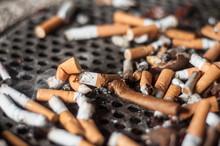 Mégots De Cigarettes Dans Un...
