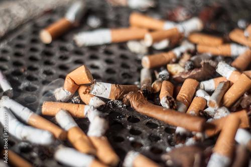 Fotografie, Obraz mégots de cigarettes dans un cendrier dans la rue