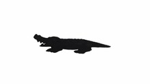 Crocodile Walking Set, Smiling...