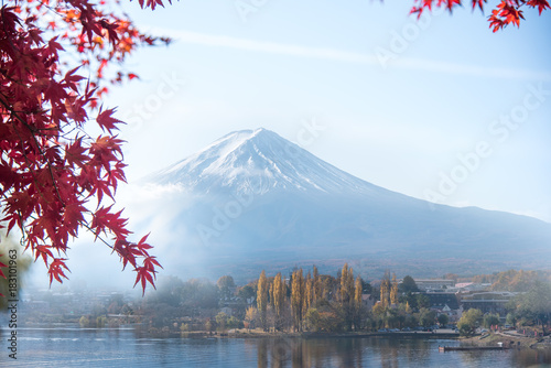 Fototapety, obrazy: Colorful Autumn in Mount Fuji, Japan - Lake Kawaguchiko is one of the best places in Japan to enjoy Mount Fuji scenery of maple leaves changing color giving image of those leaves framing Mount Fuji.