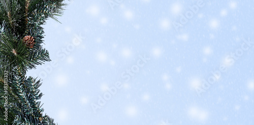 Fototapety, obrazy: Pine branch with snow in hero header format