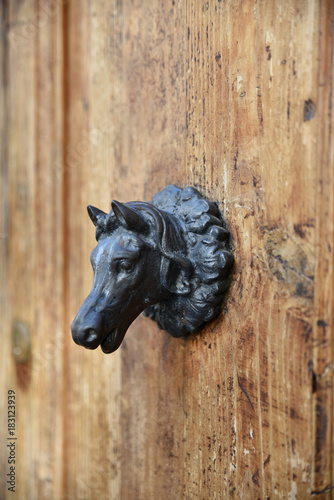Fotografie, Obraz  Poignée de porte à tête de cheval en fer forgé