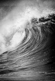 Duża fala oceanu łamania w czerni i bieli w zatoce Waimea na północnym brzegu Hawajów Oahu - 183129786
