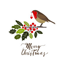 Robin With Holly, Christmas Ve...