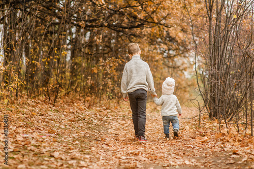 the elder brother walks with his younger sister in the autumn park Canvas Print