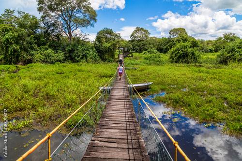 Garden Poster Brazil Pantanal in Brazil