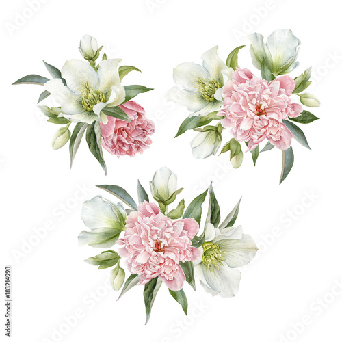 Bouquet of hellebore and peonies. Hand drawn watercolor flowers set