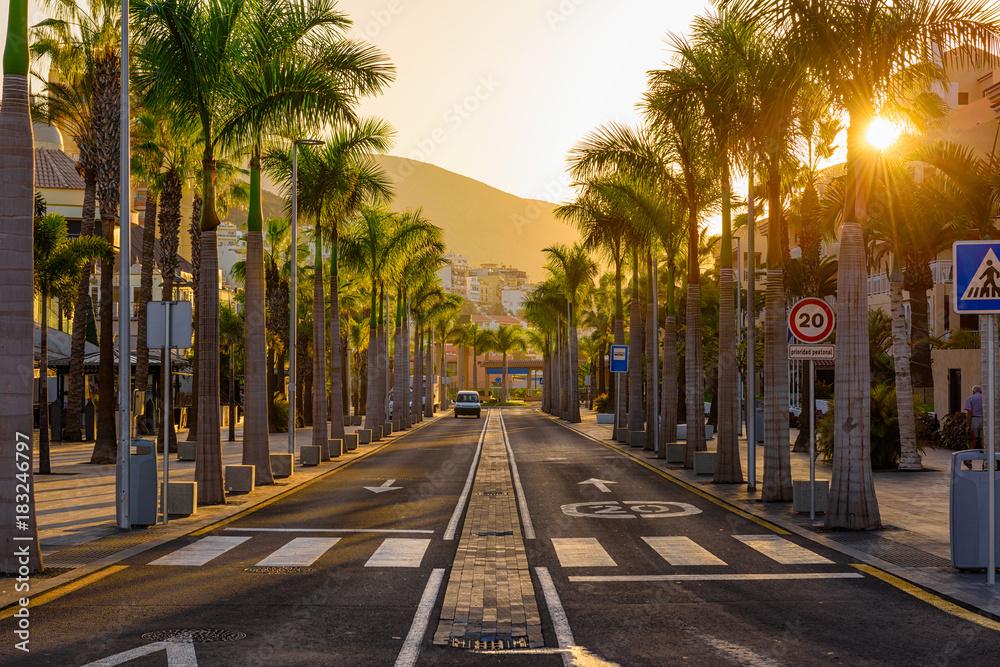 Fototapety, obrazy: Avenue las Americas in Playa de la Americas on Tenerife, Canary Islands in Spain.