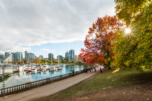 Cuadros en Lienzo Autumn colours on the sea wall on stanley park vancouver canada