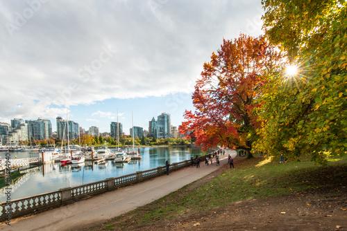 Naklejka premium Kolory jesieni na ścianie morza na Stanley Park Vancouver w Kanadzie