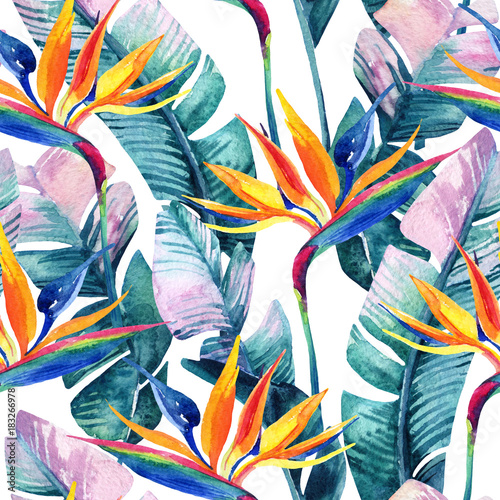 Fotoposter Paradijsvogel bloem Watercolor tropical seamless pattern with bird-of-paradise flower.