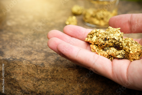 Valokuva  The pure gold ore found in the mine is in the hands of men.