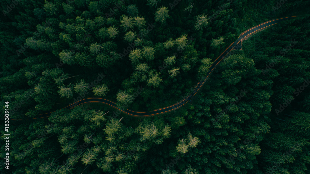 Fototapety, obrazy: Aerial view of a road in the middle of the forest