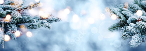 Poster Bleu clair Rime covered fir branches with bokeh in winter