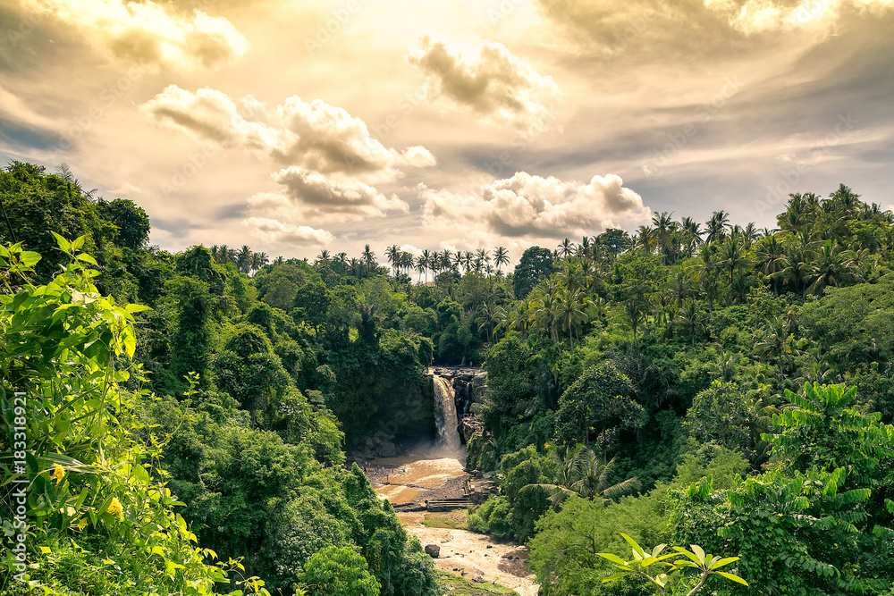 Fototapety, obrazy: magical and bucolic eden waterfall evening in bali. tegenungan.