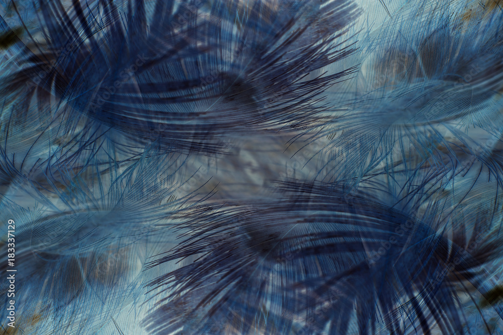 Colorful feather blue and brown texture background