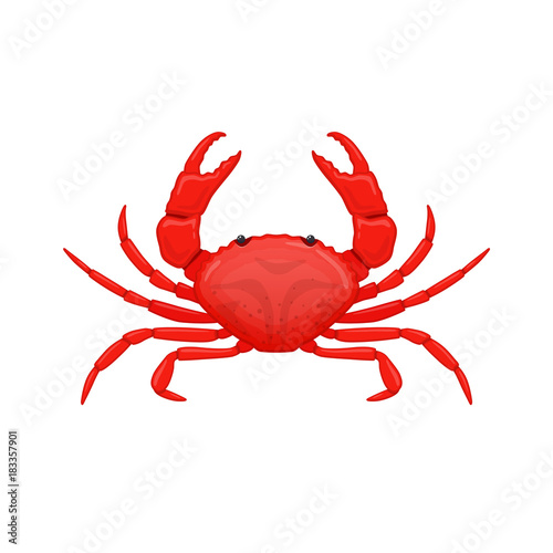 Red sea crab . Species crustacean lobsters of seas and oceans. Canvas Print