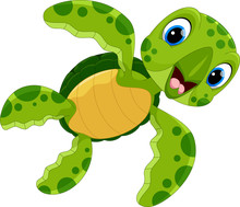 Vector Illustration Of Cute Turtle Cartoon Isolated On White Background