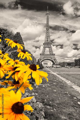 Black and white image of the Eiffel Tower with colorful yellow flowers