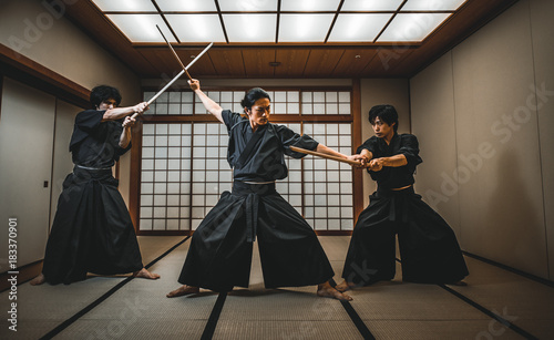 Samurai in a dojo Wallpaper Mural