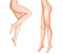 Female Legs Realistic Illustration