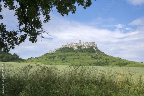Foto op Plexiglas Lavendel Spis castle on green hill in Slovakia