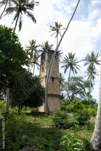 Staande foto Zanzibar ruin of war bunker in the jungle of zanzibar