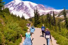 Family Hiking At Mount Rainier