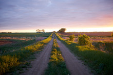 Idyllic Rural Scene With A Cou...