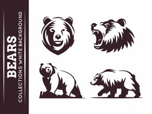 Bears Collections - Vector Ill...