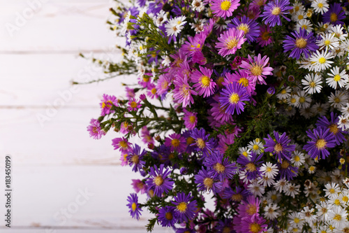 Bouquet of colorful aster flowers Wallpaper Mural