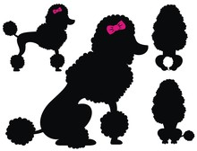 Poodle  Dog Vector Silhouettes