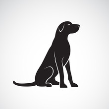 Vector Of A Labrador Retriever...