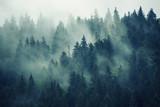Mglisty krajobraz z jodłowego lasu w stylu retro vintage hipster - 183471390