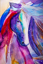Beautiful Colorful Horse Paint...