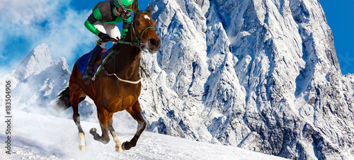 Tuinposter Paardrijden Gallop in the Snowy Alps