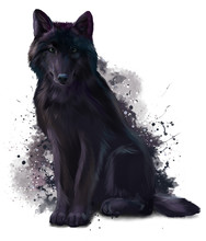 Black Wolf Watercolor Painting