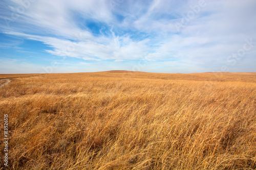 Flint Hills tallgrass prairie in Kansas. Billede på lærred