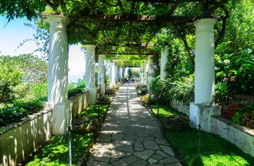 Fototapeta Ogrody Beautiful pathway in garden, nature of Capri island, Italy, retro toned