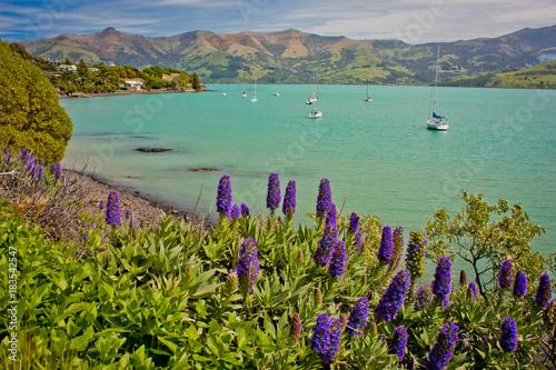 In de dag Toscane Banks Peninsula in Christchurch region, New Zealand