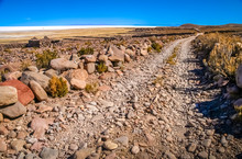 Remote Road Towards Salar De U...